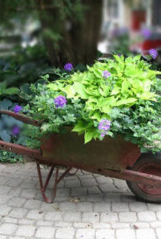 park it and plant it wheels in the garden, container gardening, flowers, gardening, repurposing upcycling, Wooden wheelbarrow bursting with colour