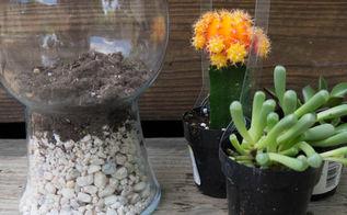 a simple terrarium, gardening, terrarium, add soil