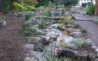 professional pond builders perspective on a backyard pond makeover in before during, outdoor living, ponds water features, Twisting turning giving some creative sight lines to the stream formation