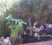 q help my pond will no longer hold water i think is is time to re line any ideas, outdoor living, ponds water features, This is how it used to look It is overgrown need to weed out restore my waterfall however whenever I fill up the pond it is empty the next day