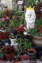 sring 2014, gardening