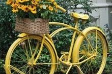 old bicycles as planters, gardening, repurposing upcycling