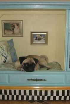 a dog s family photos, painted furniture, pets animals, repurposing upcycling