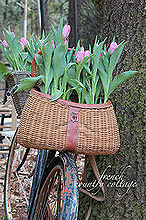 vintage bicycle planter for spring, gardening, repurposing upcycling