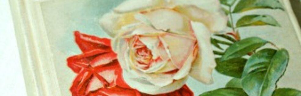Jillian's Bella Rosa Antiques cover photo