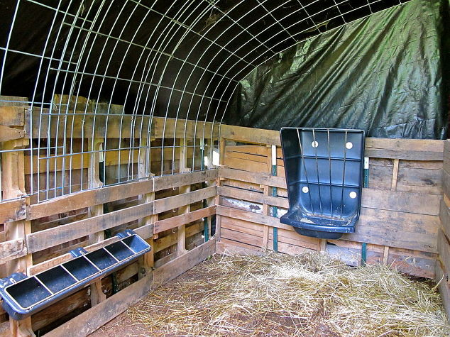 Building A Shelter Out Of Pallets Hometalk