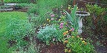backyard may 2013, flowers, gardening, landscape, May 2012