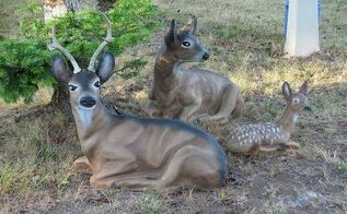 restoring concrete statuary, concrete masonry, landscape, painting, Meet my father s deer family They ve sat in his front yard for over 30 years