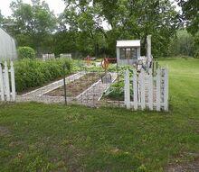 2013 garden, gardening, The garden