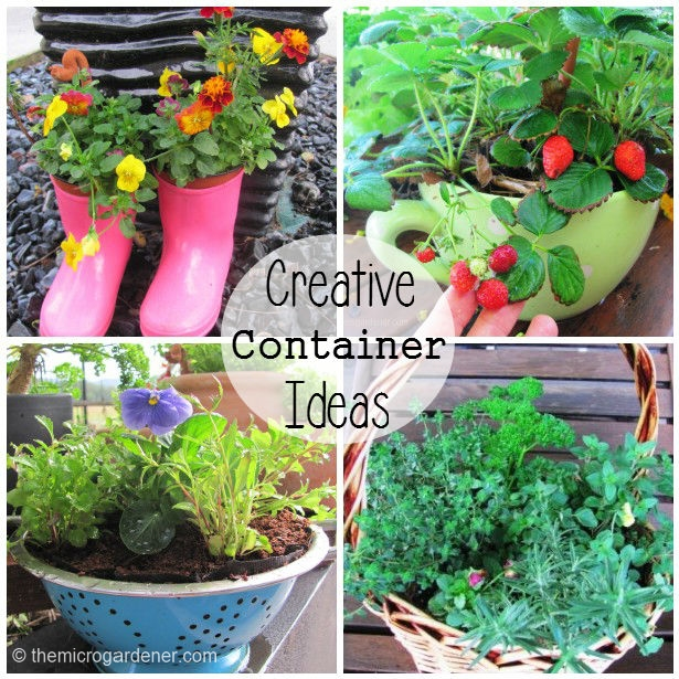 7 easy diy garden gift ideas container gardening flowers gardening give a