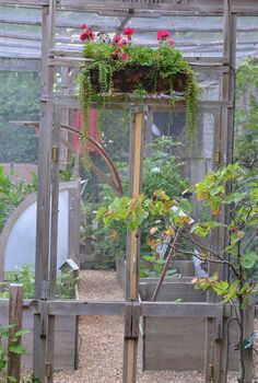 make a critter proof garden greenhouse, flowers, gardening, Rain and sunlight get in but squirrels stay out