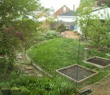 my back yard garden, gardening, view from bedroom window