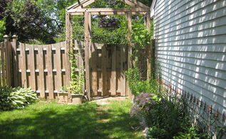 my husband made this arbor over the summer the twine between the posts help the, gardening, Arbor