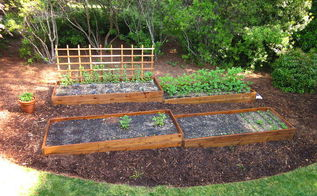 raised beds on a slope, gardening, raised garden beds, View of the North garden raised beds from our deck