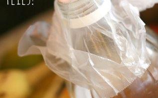 how to get rid of flies in my indoor terrariums