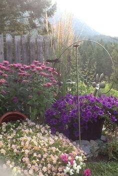 mountain yard in british columbia, flowers, gardening