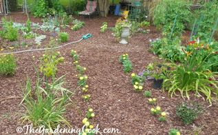 diy natural mulch garden paths so much cheaper than hardscaping, gardening, landscape