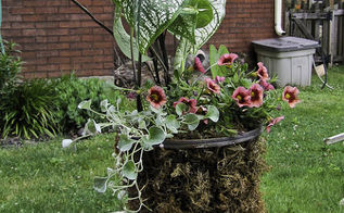 container gardening ideas and tips, container gardening, flowers, gardening