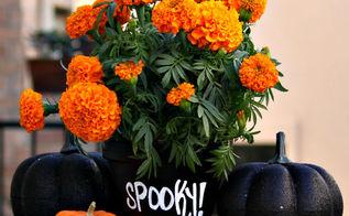 diy chalkboard flower pots, chalkboard paint, crafts, painting, seasonal holiday decor, DIY Chalkboard Flower Pots