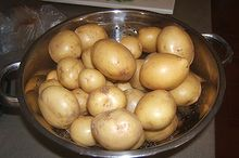 potatoes are not that innocent, gardening, go green, homesteading, Nothing better than home grown new potatoes free of pesticides herbicides and chemical fertilizers