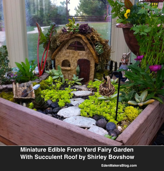 miniature and fairy garden design ideas by shirley bovshow container gardening flowers gardening