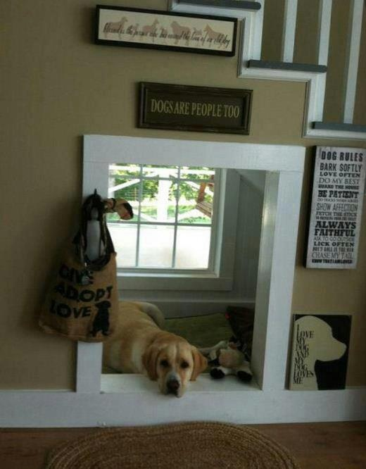 Pet Projects Home Design Ideas For Your Furry Friends Home Decor Pets Animals