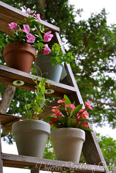 gardening repurposed ladders, gardening, repurposing upcycling, succulents, A ladder makes a vertical garden easy Follow the instructions to attach the pots to allow drainage and stability