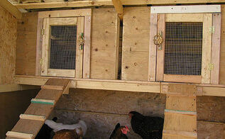 chicken coop hen coop building idea, diy, homesteading, outdoor living, pets animals, woodworking projects, My Chicken Coop Look very nice its an appartement for my laying hens Building instructions