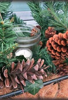 my window boxes are decked with mason jars, christmas decorations, gardening, seasonal holiday decor, windows