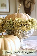 simple pumpkin and hydrangea arrangement, crafts, flowers, gardening, hydrangea, seasonal holiday decor, This simple arrangement takes just a couple of minutes to put together
