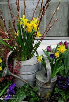 welcome spring time to change the window boxes, gardening, seasonal holiday d cor, close up of the galvanized watering can accents