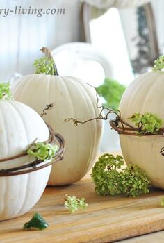 how to spruce up pumpkins with grapevines, crafts, gardening, seasonal holiday decor, wreaths, Embellish the grapevine wrapped pumpkins with dried hydrangeas or other floral element