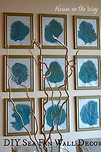 diy sea fan wall decor, crafts, home decor, I love the symmetrical look of this gallery wall