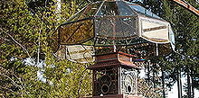 grow up 20 ideas for arbors trellis obelisks and more, gardening, landscape, outdoor living, These chandeliers were popular in the 1970s and are still available at thriftstores My husband removes the innards and with a little modification we attach various feeders