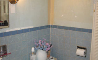 redo of 1950 s bathroom before and after, bathroom ideas, home decor, wall decor