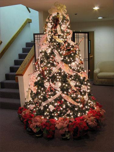 weekend inspiration o christmas tree o christmas tree seasonal holiday d cor christmas tree christmas tree decorating inpiration - Decorative Christmas Trees