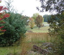 fall in alabama, gardening, landscape, outdoor living, Looking out toward the neighbors
