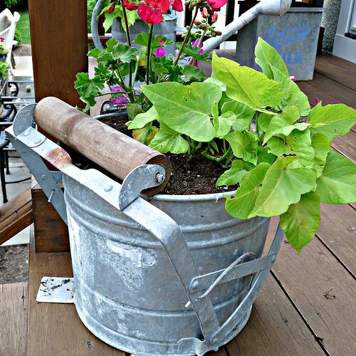 Vintage mop bucket planter. Click link for more pics http://eclecticallyvintage.com/2012/06/mop-bucket-planters/