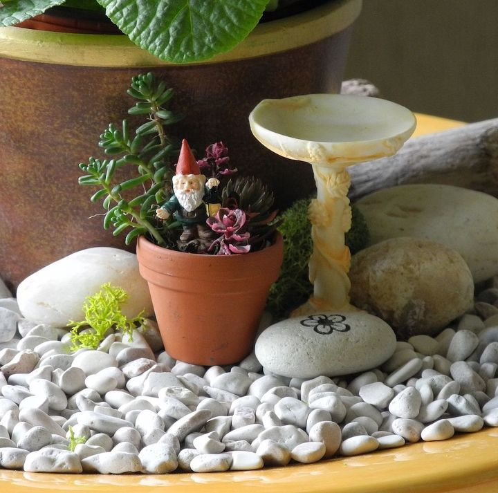 Ideas For Miniature Gardens marvellous design fairy garden plants unique 15 ideas you can use from our experts Fast Easy Indoor Miniature Garden Ideas For The Black Thumb Crafts Gardening Home