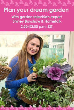plan your dream garden with shirley bovshow and hometalk, gardening, outdoor living