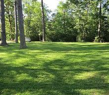 my lawn, gardening, landscape
