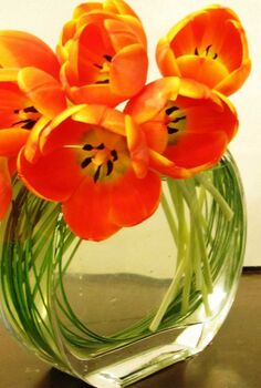 the way of making perfect flower arrangement for interior, flowers, gardening, home decor