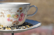 birds and butterflies 6 diy feeders, crafts, mason jars, outdoor living, Teacups If you head to your local thrift store or garage sale to find a few vintage teacups you re already halfway done with this bird feeder This project requires no sawing or cutting