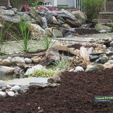 rainwater harvesting and self sustainable water feature, doors, go green, outdoor living, ponds water features, spas, A broader view of the design shows the bog filtration area along with the first half of the natural stream that features small pooling areas along the way which is key for a natural look