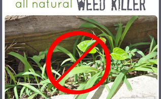 vinegar as an all natural weed killer, gardening, go green, Vinegar really works to kill weeds