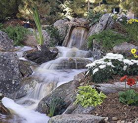 2014 Denver Home Show Garden Gardens Of Excellence, Flowers, Gardening,  Landscape, Outdoor