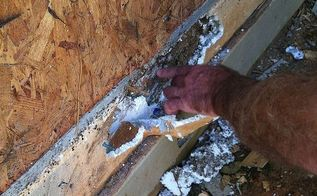 you may have termites and not even know it, home maintenance repairs, pest control