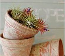 aging terra cotta pots the easy way, crafts, gardening, The finished pots after just a little paint and sand paper xo
