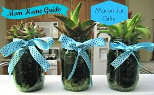 mason jar succulents, flowers, gardening, mason jars, repurposing upcycling, succulents
