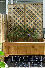 build a raised cedar garden, diy, gardening, raised garden beds, woodworking projects, My finished garden
